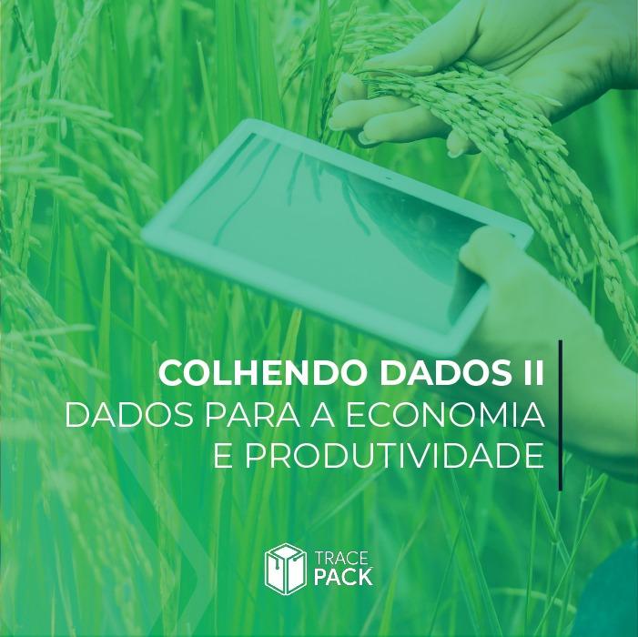 Dados para a economia e produtividade